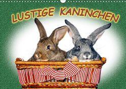 Lustige Kaninchen (Wandkalender 2018 DIN A3 quer) von www.eugenfoto.eu,  k.A.