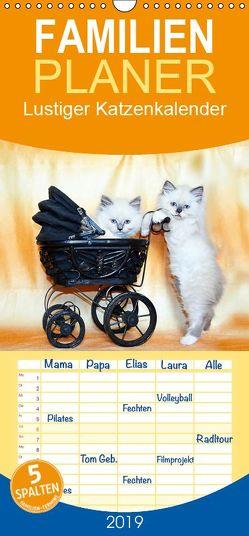 Lustiger Katzenkalender – Familienplaner hoch (Wandkalender 2019 , 21 cm x 45 cm, hoch) von Chrystal,  Jennifer
