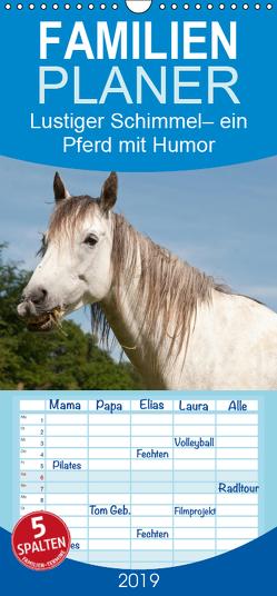 Lustiger Schimmel – ein Pferd mit Humor – Familienplaner hoch (Wandkalender 2019 , 21 cm x 45 cm, hoch) von Bölts,  Meike