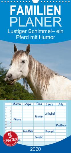 Lustiger Schimmel – ein Pferd mit Humor – Familienplaner hoch (Wandkalender 2020 , 21 cm x 45 cm, hoch) von Bölts,  Meike