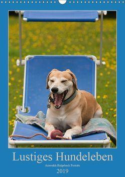 Lustiges Hundeleben – Azawakh Ridgeback Porträts (Wandkalender 2019 DIN A3 hoch)