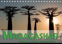 Madagaskar – Geheimnisvolle Insel im Indischen Ozean (Tischkalender 2019 DIN A5 quer) von Pohl,  Gerald