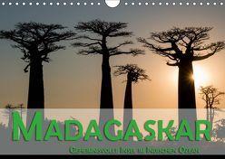 Madagaskar – Geheimnisvolle Insel im Indischen Ozean (Wandkalender 2019 DIN A4 quer) von Pohl,  Gerald
