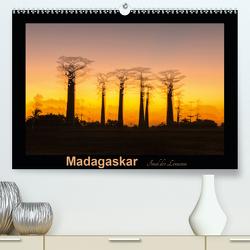 Madagaskar – Insel der Lemuren (Premium, hochwertiger DIN A2 Wandkalender 2020, Kunstdruck in Hochglanz) von Kribus,  Uwe