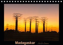 Madagaskar – Insel der Lemuren (Tischkalender 2019 DIN A5 quer) von Kribus,  Uwe