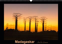 Madagaskar – Insel der Lemuren (Wandkalender 2020 DIN A3 quer) von Kribus,  Uwe