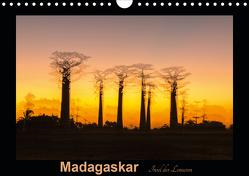 Madagaskar – Insel der Lemuren (Wandkalender 2020 DIN A4 quer) von Kribus,  Uwe