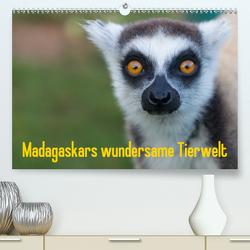 Madagaskars wundersame Tierwelt (Premium, hochwertiger DIN A2 Wandkalender 2021, Kunstdruck in Hochglanz) von Hopfmann,  Antje