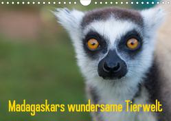 Madagaskars wundersame Tierwelt (Wandkalender 2020 DIN A4 quer) von Hopfmann,  Antje