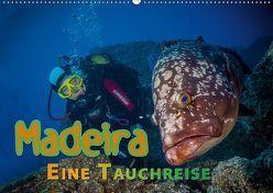 Madeira, eine Tauchreise (Wandkalender 2019 DIN A2 quer) von Gödecke,  Dieter