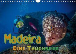Madeira, eine Tauchreise (Wandkalender 2019 DIN A4 quer) von Gödecke,  Dieter