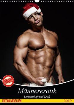 Männererotik. Leidenschaft und Kraft (Wandkalender 2019 DIN A3 hoch) von Stanzer,  Elisabeth