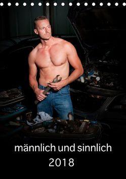 männlich und sinnlich (Tischkalender 2019 DIN A5 hoch) von Werner / Wernerimages,  Peter