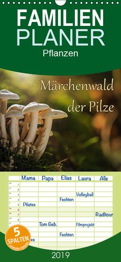 Märchenwald der Pilze – Familienplaner hoch (Wandkalender 2019 , 21 cm x 45 cm, hoch) von Radtke,  Philipp