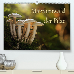 Märchenwald der Pilze (Premium, hochwertiger DIN A2 Wandkalender 2021, Kunstdruck in Hochglanz) von Radtke,  Philipp