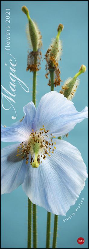 Magic Flowers Vertical Kalender 2021 von Heye, Pietrek,  Sibylle