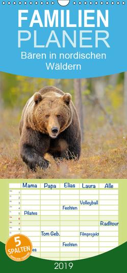 Magie des Augenblicks – Bären in nordischen Wäldern – Familienplaner hoch (Wandkalender 2019 , 21 cm x 45 cm, hoch) von Wisniewski,  Winfried