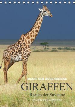Magie des Augenblicks – Giraffen – Riesen der Savanne (Tischkalender 2019 DIN A5 hoch) von Wisniewski,  Winfried