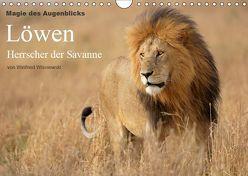 Magie des Augenblicks – Löwen – Herrscher der Savanne (Wandkalender 2019 DIN A4 quer) von Wisniewski,  Winfried