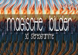 Magische Bilder – 3D Stereogramme (Wandkalender 2021 DIN A2 quer) von Bleicher,  Renate