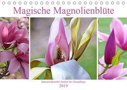 Magische Magnolienblüte (Tischkalender 2019 DIN A5 quer) von B-B Müller,  Christine