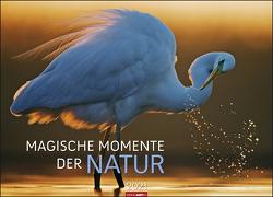 Magische Momente der Natur Kalender 2021 von Weingarten