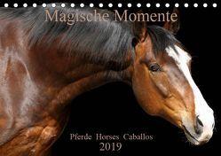 Magische Momente – Pferde Horses Caballos (Tischkalender 2019 DIN A5 quer) von Eckerl Tierfotografie www.petraeckerl.com,  Petra