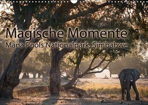 Magische MomenteMana Pools Nationalpark, Simbabwe (Wandkalender 2018 DIN A3 quer) von Täuscher,  Julia