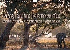 Magische MomenteMana Pools Nationalpark, Simbabwe (Wandkalender 2018 DIN A4 quer) von Täuscher,  Julia