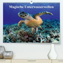 Magische Unterwasserwelten (Premium, hochwertiger DIN A2 Wandkalender 2021, Kunstdruck in Hochglanz) von Hablützel,  Martin