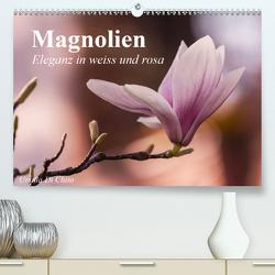 Magnolien – Eleganz in weiss und rosa (Premium, hochwertiger DIN A2 Wandkalender 2020, Kunstdruck in Hochglanz) von Di Chito,  Ursula