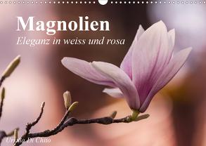 Magnolien – Eleganz in weiss und rosa (Wandkalender 2020 DIN A3 quer) von Di Chito,  Ursula