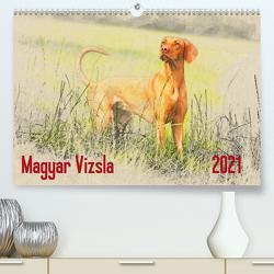 Magyar Vizsla 2021 (Premium, hochwertiger DIN A2 Wandkalender 2021, Kunstdruck in Hochglanz) von Redecker,  Andrea