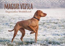 Magyar Vizsla – Ungarischer Vorstehhund (Tischkalender 2019 DIN A5 quer) von Hollstein,  Alexandra