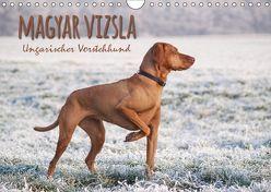 Magyar Vizsla – Ungarischer Vorstehhund (Wandkalender 2019 DIN A4 quer) von Hollstein,  Alexandra