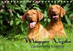 Magyar Vizsla – Zauberhafte Kobolde (Tischkalender 2019 DIN A5 quer) von Grüttner,  Kerstin
