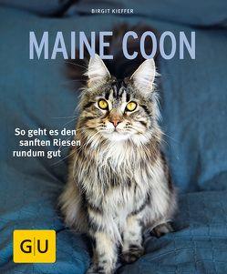 Maine Coon von Kieffer,  Birgit