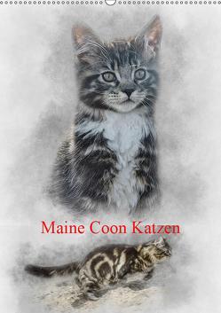 Maine Coon Katzen (Wandkalender 2019 DIN A2 hoch) von Gaymard,  Alain