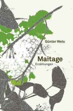Maitage von Wels,  Günter