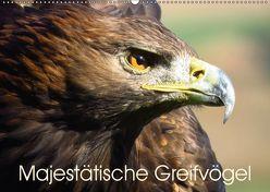 Majestätische Greifvögel (Wandkalender 2019 DIN A2 quer) von Dürr,  Brigitte