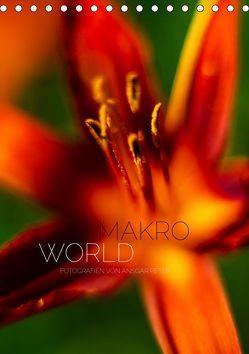 Makro World (Tischkalender 2019 DIN A5 hoch) von Peter,  Ansgar