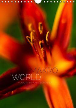 Makro World (Wandkalender 2019 DIN A4 hoch) von Peter,  Ansgar