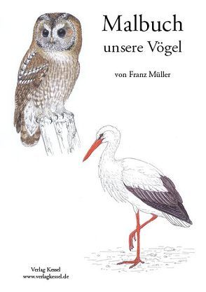 Malbuch unsere Vögel von Müller,  Franz,  Dr.