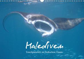 Malediven – Tauchparadies im Indischen Ozean (Wandkalender 2021 DIN A3 quer) von Schonnop,  Juergen