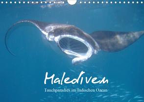Malediven – Tauchparadies im Indischen Ozean (Wandkalender 2021 DIN A4 quer) von Schonnop,  Juergen