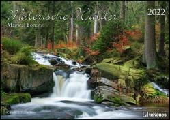 Malerische Wälder 2022 – Wand-Kalender – 42×29,7 – Wald – Natur von Dörr,  Cornelia & Ramon