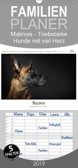 Malinois – Triebstarke Hunde mit viel Herz – Familienplaner hoch (Wandkalender 2019 , 21 cm x 45 cm, hoch) von Wrede,  Martina