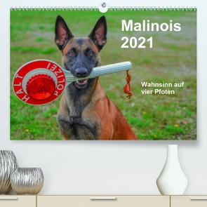 Malinois – Wahnsinn auf vier Pfoten (Premium, hochwertiger DIN A2 Wandkalender 2021, Kunstdruck in Hochglanz) von Trocha,  Alexander