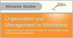 Management und Organisation in mittelständischen Unternehmen von Lembke,  Gerald, Reinfeldt,  Fabian