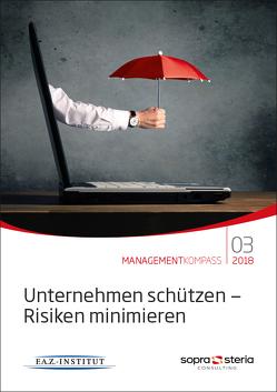 Managementkompass Unternehmen schützen – Risiken minimieren